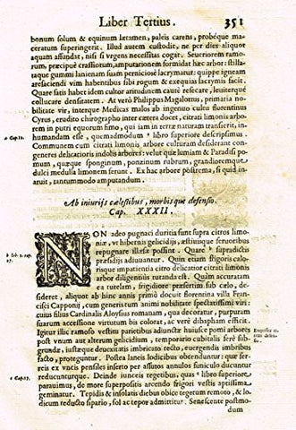 "Ferrari HESPERTHUSA'S - ""ILLUMINATED INITIAL - Page 351"" - Copper Engraving - 1646"