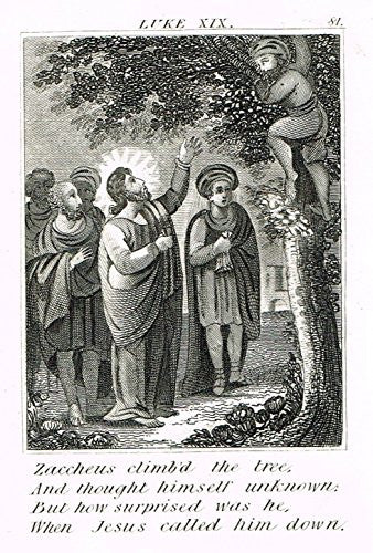 "Miller's Scripture History - ""ZACCHEUS CLIMBED THE TREE"" - Small Religious Copper Engraving - 1839"