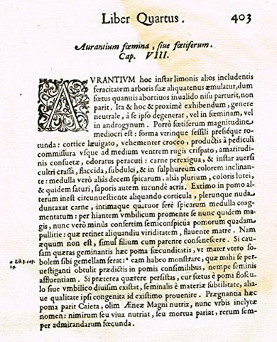"Ferrari HESPERTHUSA'S - ""ILLUMINATED INITIAL - A, Page 403"" - Copper Engraving - 1647"