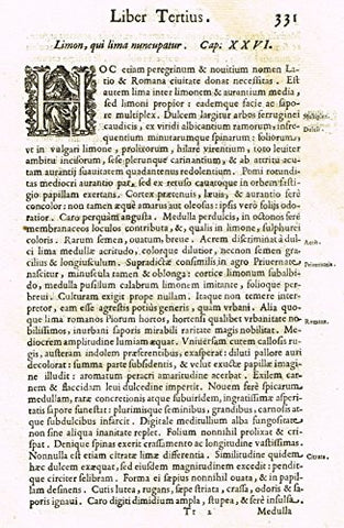"Ferrari HESPERTHUSA'S - ""ILLUMINATED INITIAL - H, Page 331"" - Copper Engraving - 1646"