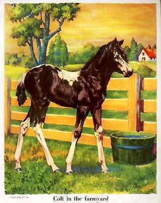 """Animal Friends""  by Piper - 1927 - ""COLT IN FARMYARD"" - Sandtique-Rare-Prints and Maps"
