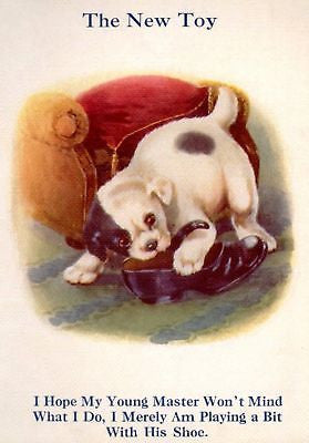 """My Puppy Playmates""  by Sam'l - 1931 - ""POOR SHOE"" - Sandtique-Rare-Prints and Maps"