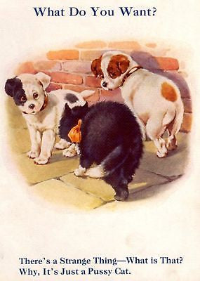 """My Puppy Playmates""  by Sam'l - 1931 - ""PUPPIES & CAT"" - Sandtique-Rare-Prints and Maps"
