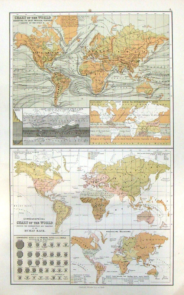 "Antique Map - ""CHART OF THE WORLD - Human Race"" by A. & C. Black - Chromolithograph - 1870"