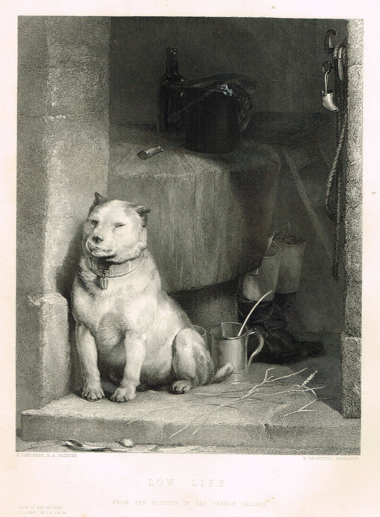 "Fine Art - ""LOW LIFE"" by E. Landseer (Engraved by H. Beckwith) - Steel Engraving - c1840"