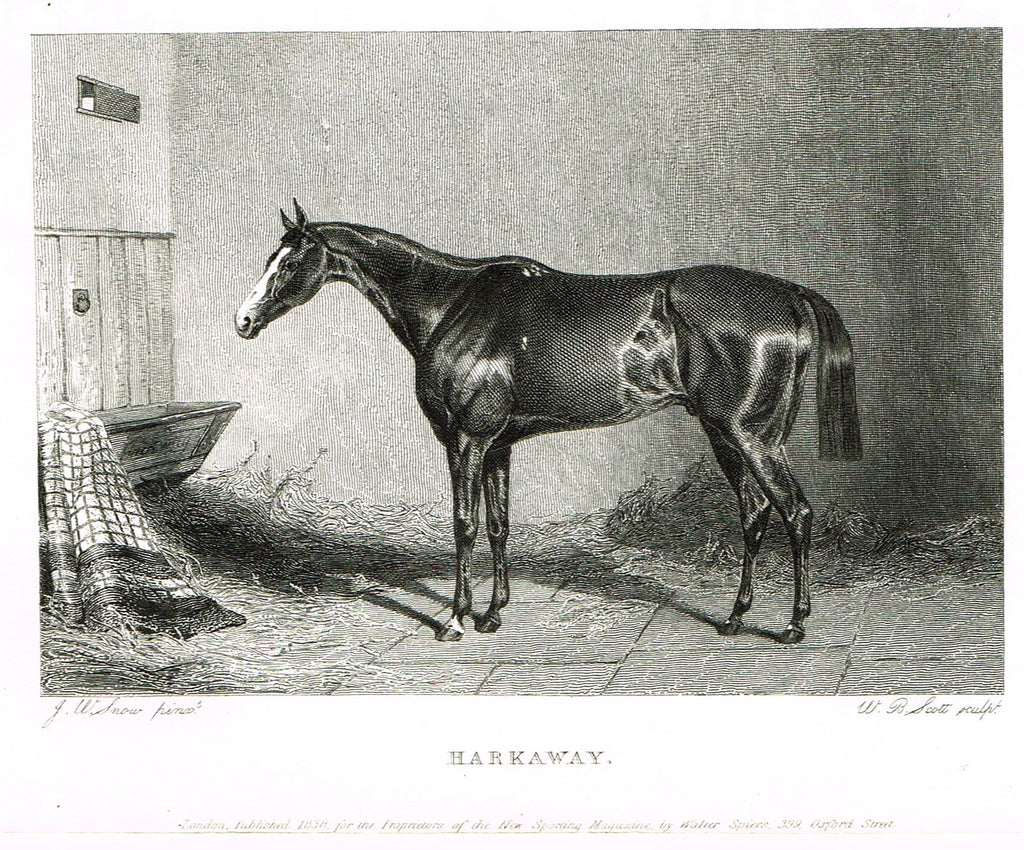 "Ackermann's Sporting Magazine - HORSES - ""HARKAWAY"" - Steel Engraving - c1838 - Sandtique-Rare-Prints and Maps"