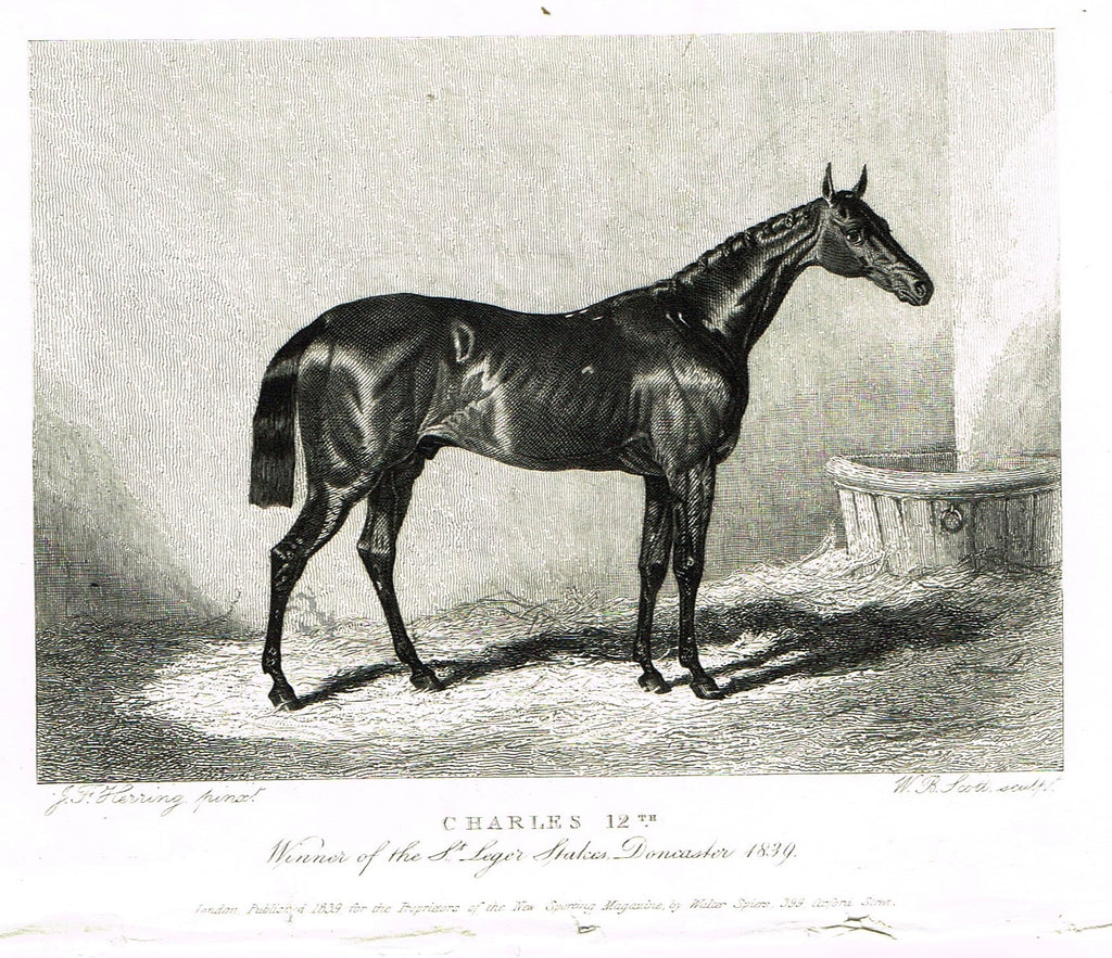 "Ackermann's Sporting Magazine - HORSES - ""CHARLES 12th"" - Steel Engraving - c1838 - Sandtique-Rare-Prints and Maps"