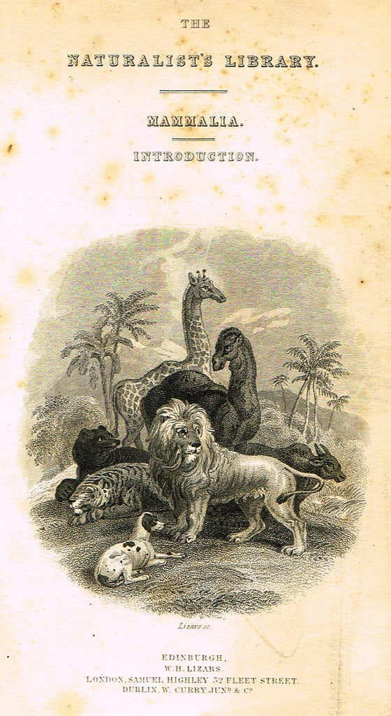 "Jardine's Animals - ""FRONTISPIECE - WILD ANIMALS"" - Hand-Colored Engraving - 1833"