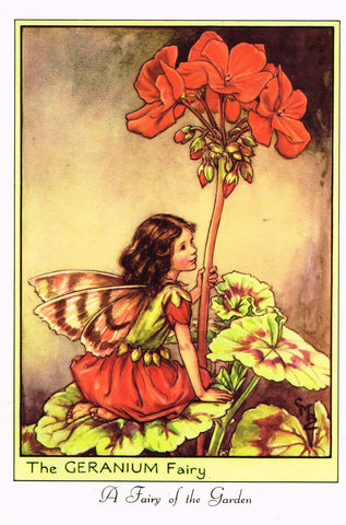 "Cicely Barker's Fairy Print - ""THE GERANIUM FAIRY"" - LARGE Children's Lithogrpah - c1955"