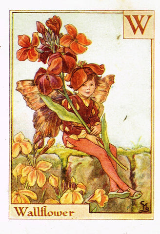 "Cicely Barker's Fairy Print - ""WALLFLOWER"" - Children's Lithogrpah - c1935"
