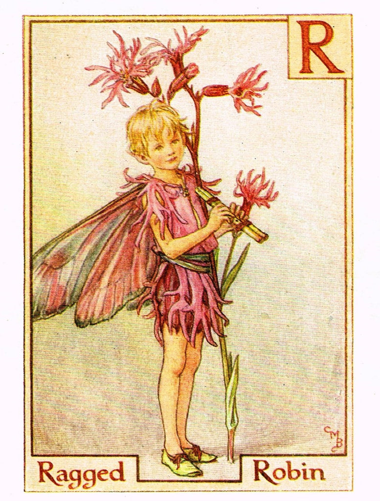 "Cicely Barker's Fairy Print - ""RAGED ROBIN"" - Children's Lithogrpah - c1935"