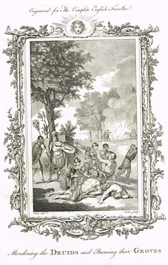 "Antique History Print - ""MURDERING THE DRUIDS AND BURNING THEIR GROVES"" - Copper Engraving - 1793"