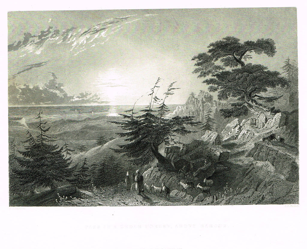 "Bartlett's ""PASS IN THE CEDAR FOREST ABOVE BAROUK"" - SYRIA - Steel Engraving - 1836"