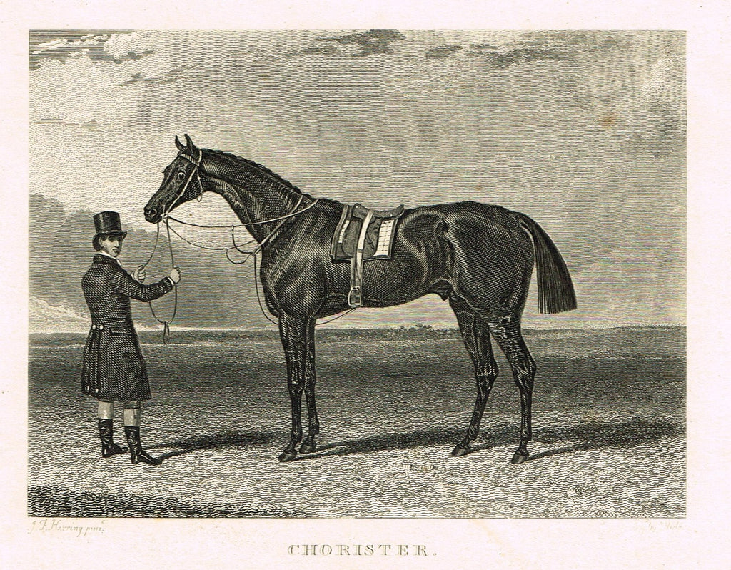 "Ackermann's Sporting Magazine - HORSES - ""CHORISTER"" - Steel Engraving - c1838 - Sandtique-Rare-Prints and Maps"
