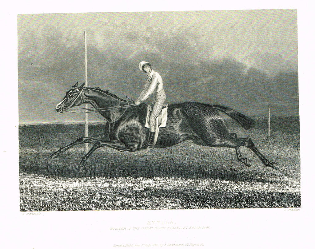 "Ackermann's Sporting Magazine - HORSES - ""ATTILA"" - Steel Engraving - c1838 - Sandtique-Rare-Prints and Maps"