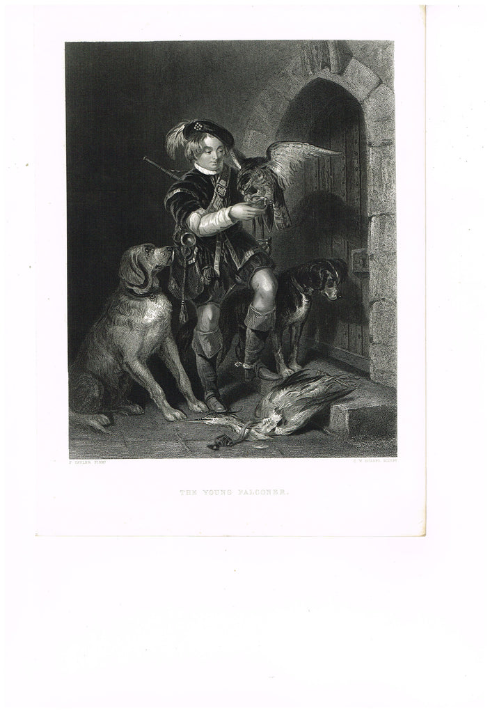 "Art Journal's - ""THE YOUNG FALCONER""  by Ward - Steel Engraving - c1860"