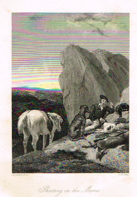 "Sporting Magazine - ""SHOOTING ON THE MOORS"" (HUNTING) - Engraving - c1865"