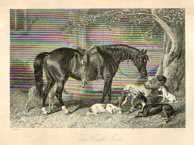 "Sporting Magazine - ""THE CASTLE GATE""  (HUNTING) - Engraving - c1865"