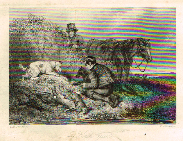 "Sporting Magazine - ""KEEP QUIET""  (HUNTING) - Engraving - c1865"