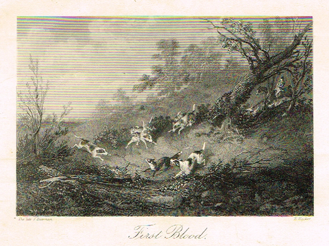 "Sporting Magazine - ""FIRST BLOOD""  (FOX HUNTING) - Engraving - c1865"