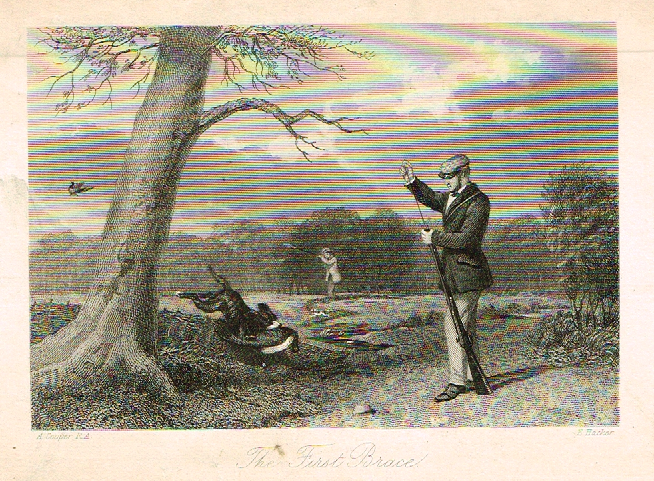 "Sporting Magazine - ""THE FIRST BRACE""  (FOX HUNTING) - Engraving - c1865"