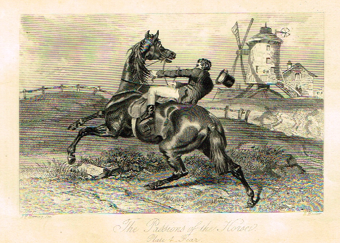 "Sporting Magazine - ""THE PASSION OF THE HORSE""  (HORSES) - Engraving - c1865"