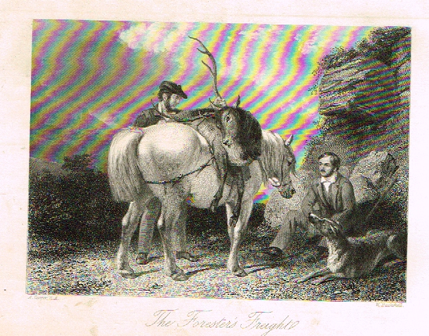 "Sporting Magazine - ""THE FORESTER'S FREIGHT""  (HUNTING) - Engraving - c1865"