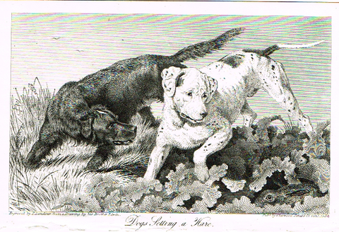 "Landseer's Dogs - ""DOGS SETTING A HARE"" - Copper Engraving - 1825"