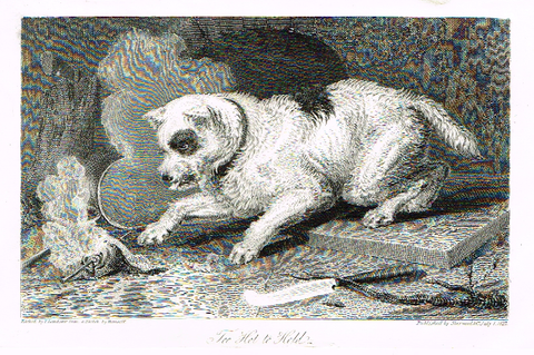 "Landseer's Dogs - ""TOO HOT TO HOLD"" - Copper Engraving - 1825"