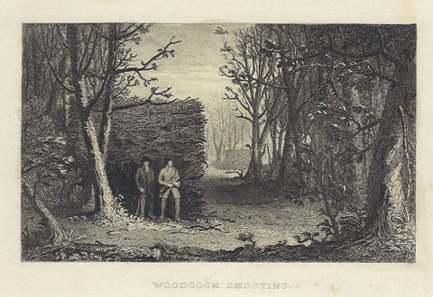 "Sporting Magazine -  ""WOODCOCK SHOOTING"" - Steel Engraving - c1880"