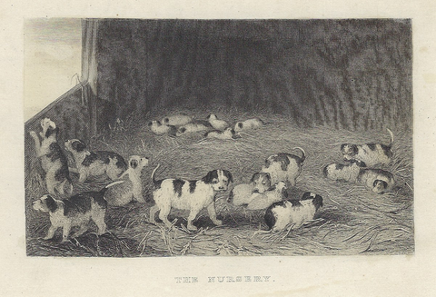 "Sporting Magazine -  ""THE NURSERY - Steel Engraving - c1880"