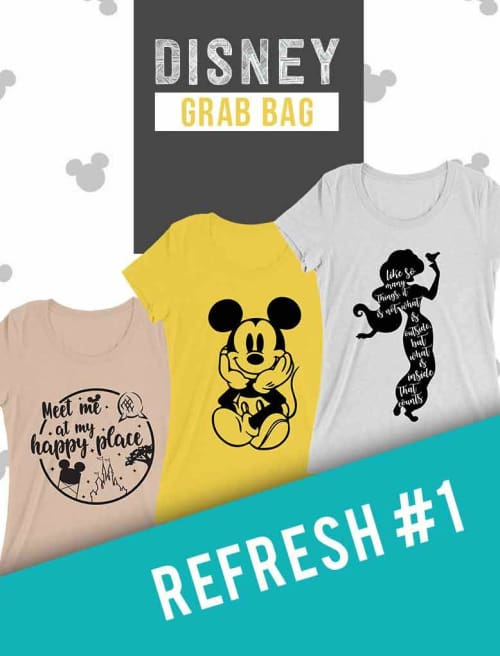 Disney Themed Grab Bag - Refresh #1 - Custom Made