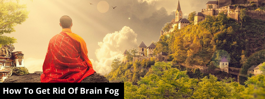 What Causes Brain Fog And How To Fix It Axon Labs