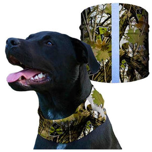 DOG SHIELD Camo | WorkingDogsDirect