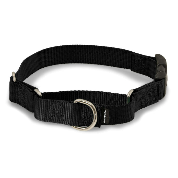 Martingale Collars with Quick Snap Buckle - Black | WorkingDogsDirect