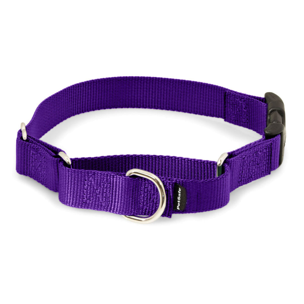Martingale Collars with Quick Snap Buckle - Deep Purple | WorkingDogsDirect