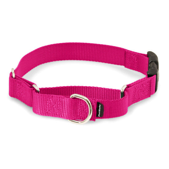 Martingale Collars with Quick Snap Buckle - Raspberry | WorkingDogsDirect