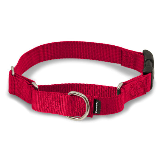 Martingale Collars with Quick Snap Buckle - Red | WorkingDogsDirect