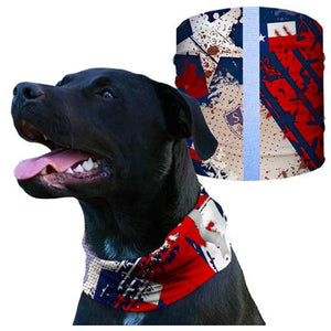 DOG SHIELD Red White Blue | WorkingDogsDirect