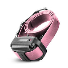 RX-090 RECEIVER SMALL WITH PINK STRAP | WorkingDogsDirect