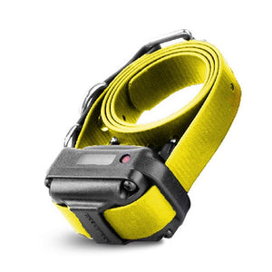RX-090 RECEIVER SMALL WITH YELLOW STRAP | WorkingDogsDirect