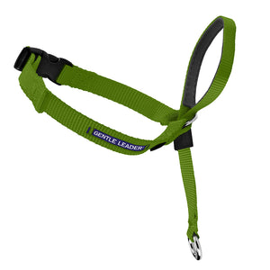 Gentle Leader Headcollar No-Pull Dog Collar - Apple | WorkingDogsDirect