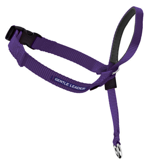 Gentle Leader Headcollar No-Pull Dog Collar - Deep Purple | WorkingDogsDirect