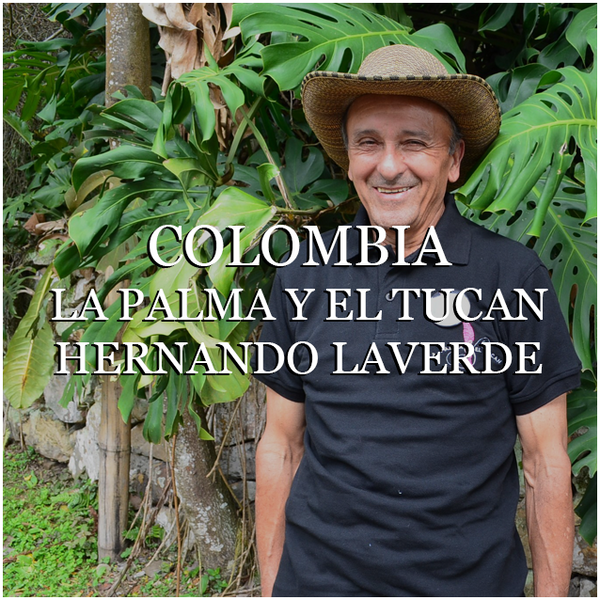 Colombia Don Hernando Laverde