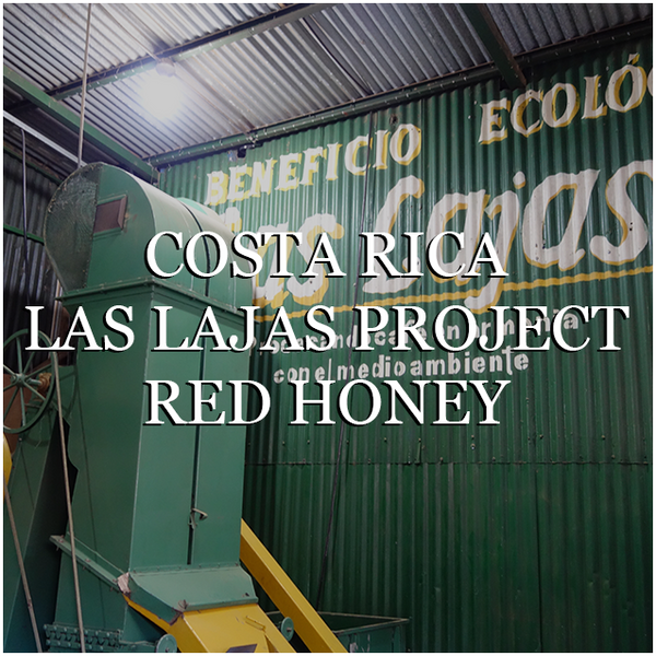 Costa Rica Las Lajas Red Honey - Wholesale
