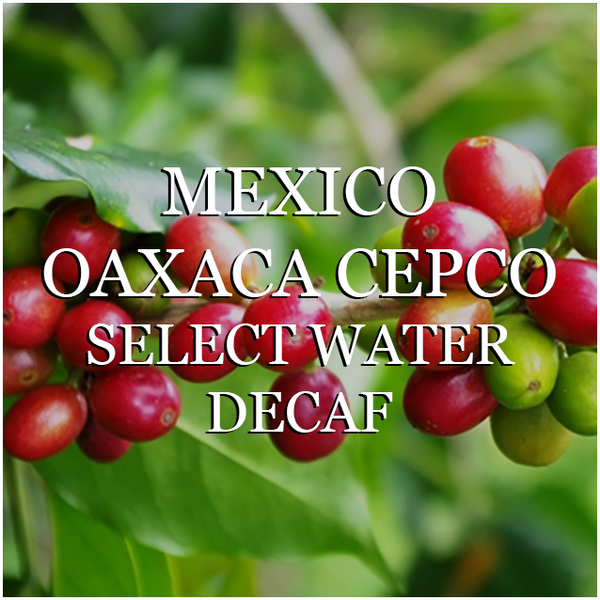Mexico Oaxaca CEPCO Select Water Decaf