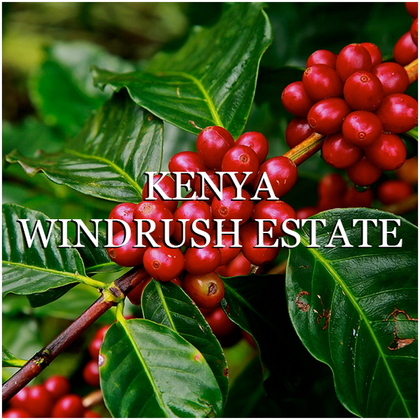 Kenya Windrush Estate