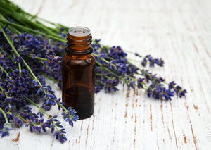 Cost of Lavender Essential Oil