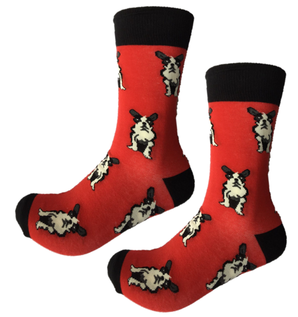 Boston Terrier Crew Socks | Sock of the Month Club Canada