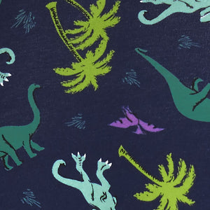 Land of dinosaur women hipster underwear